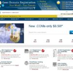 Geer Domains Home Page Sample