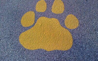 Geer Services Paint Final 2016 Paw Prints